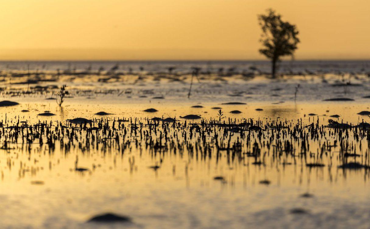 Ile Ibo au Mozambique