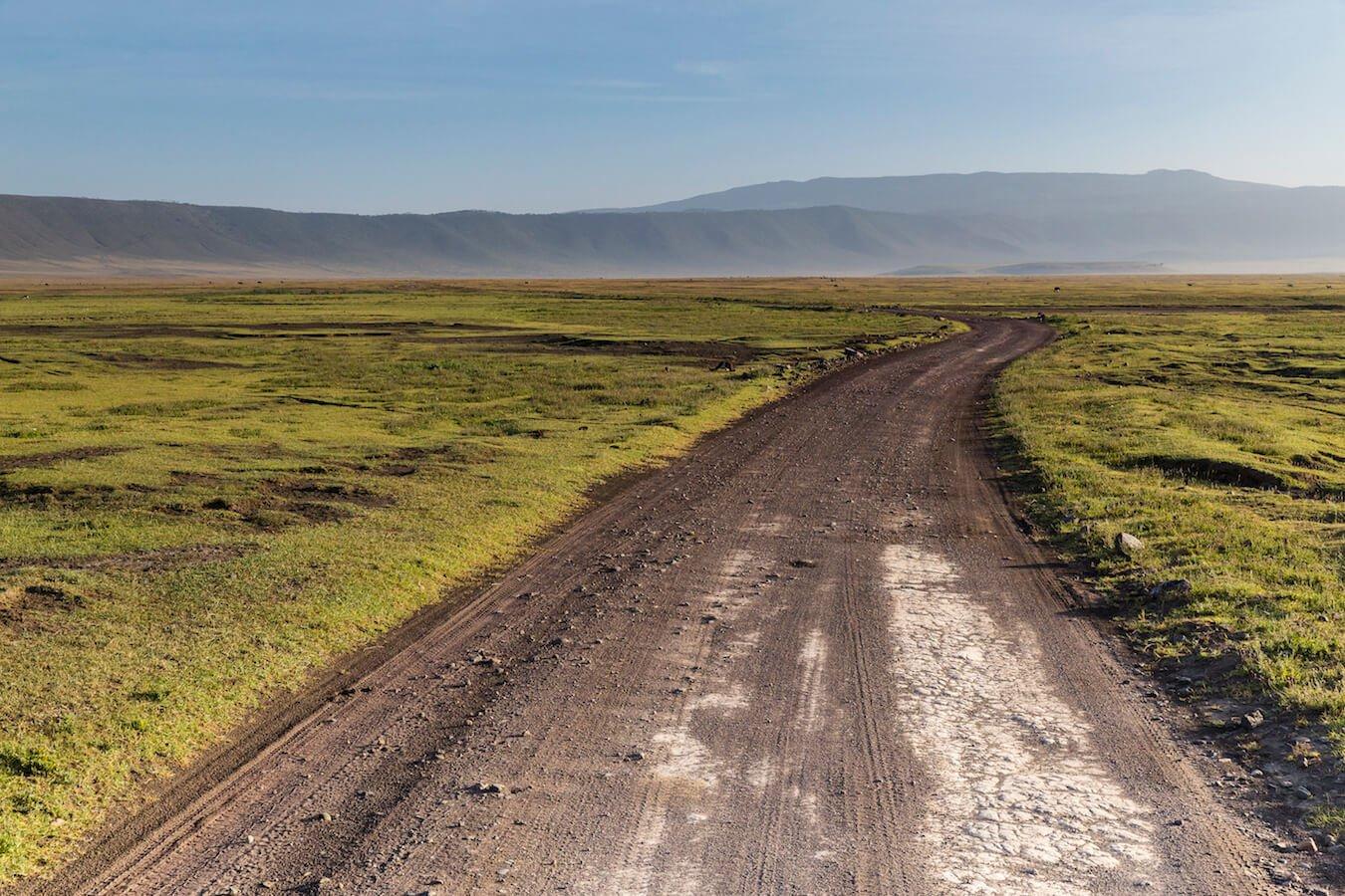 comment choisir son matériel pour un safari photo