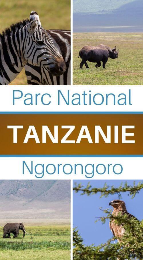 ngorongoro cratère tanzanie