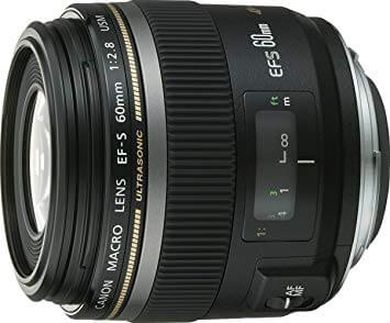 canon which camera lens