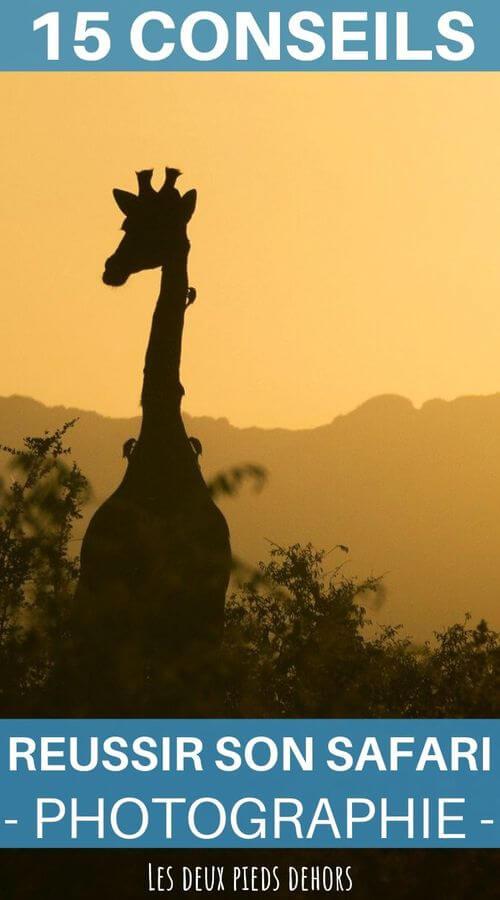 15 conseils pour reussir son safari photo