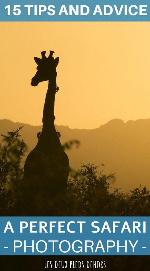 15 tips for a successful photo safari