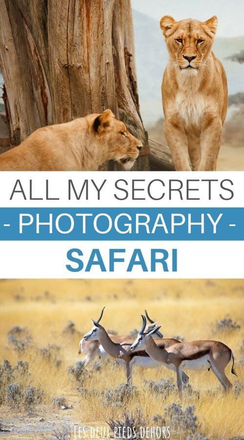 tips for a photo safari