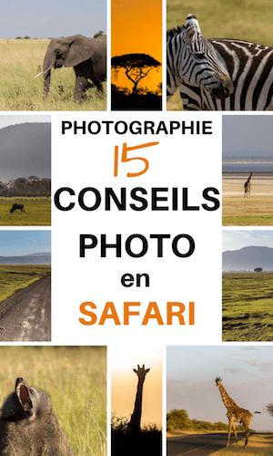 conseils photo safari