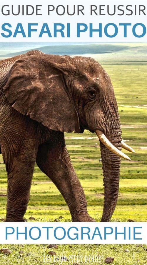 guide pour reussir un safari photo