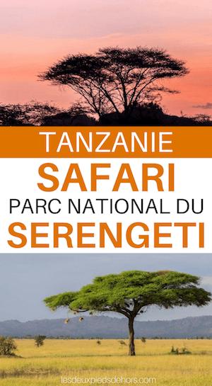 serengeti parc national