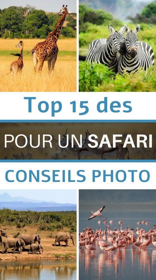 top 15 des conseils pour un safari photo
