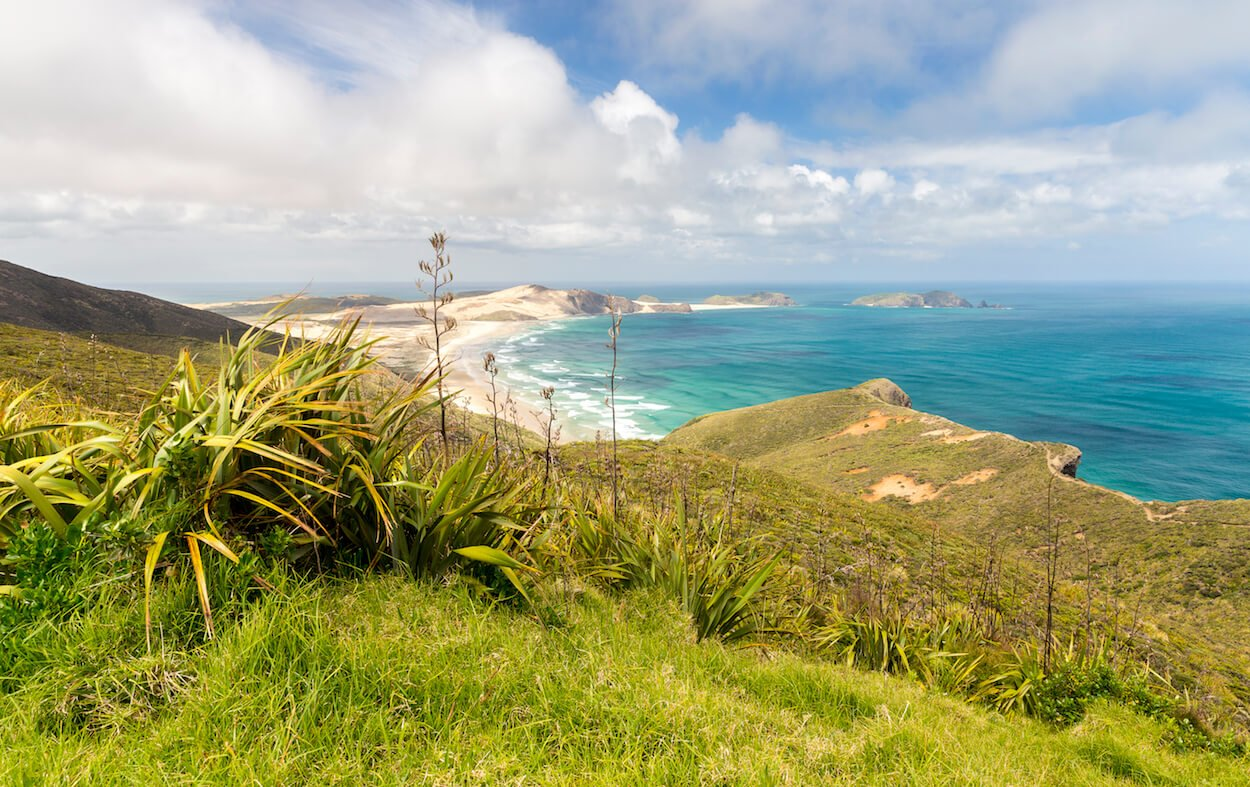 Budget pour un voyage en Nouvelle-Zélande