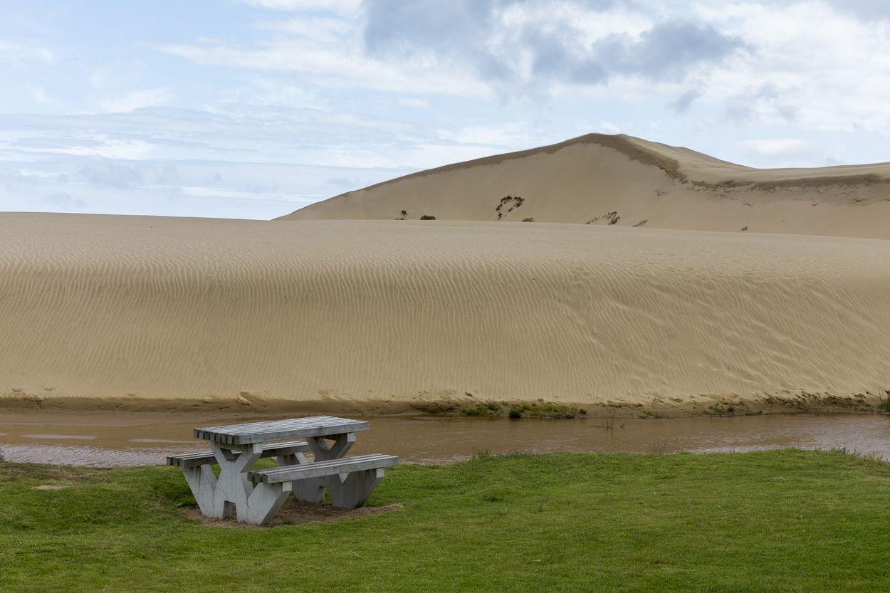 Te Paki sand dune au Cap reinga en Nouvelle-Zélande