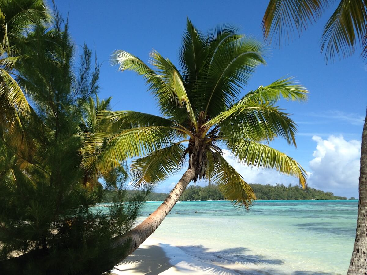 moorea - Photo