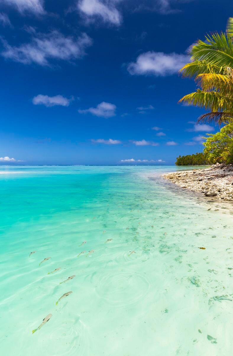 Vivra en Polynésie et y travailler