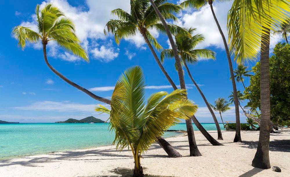 vivre à tahiti en 2019