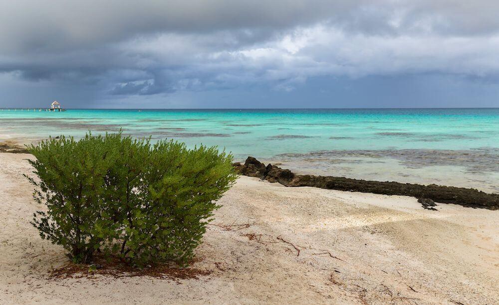 s'expatrier en 2019 à Tahiti