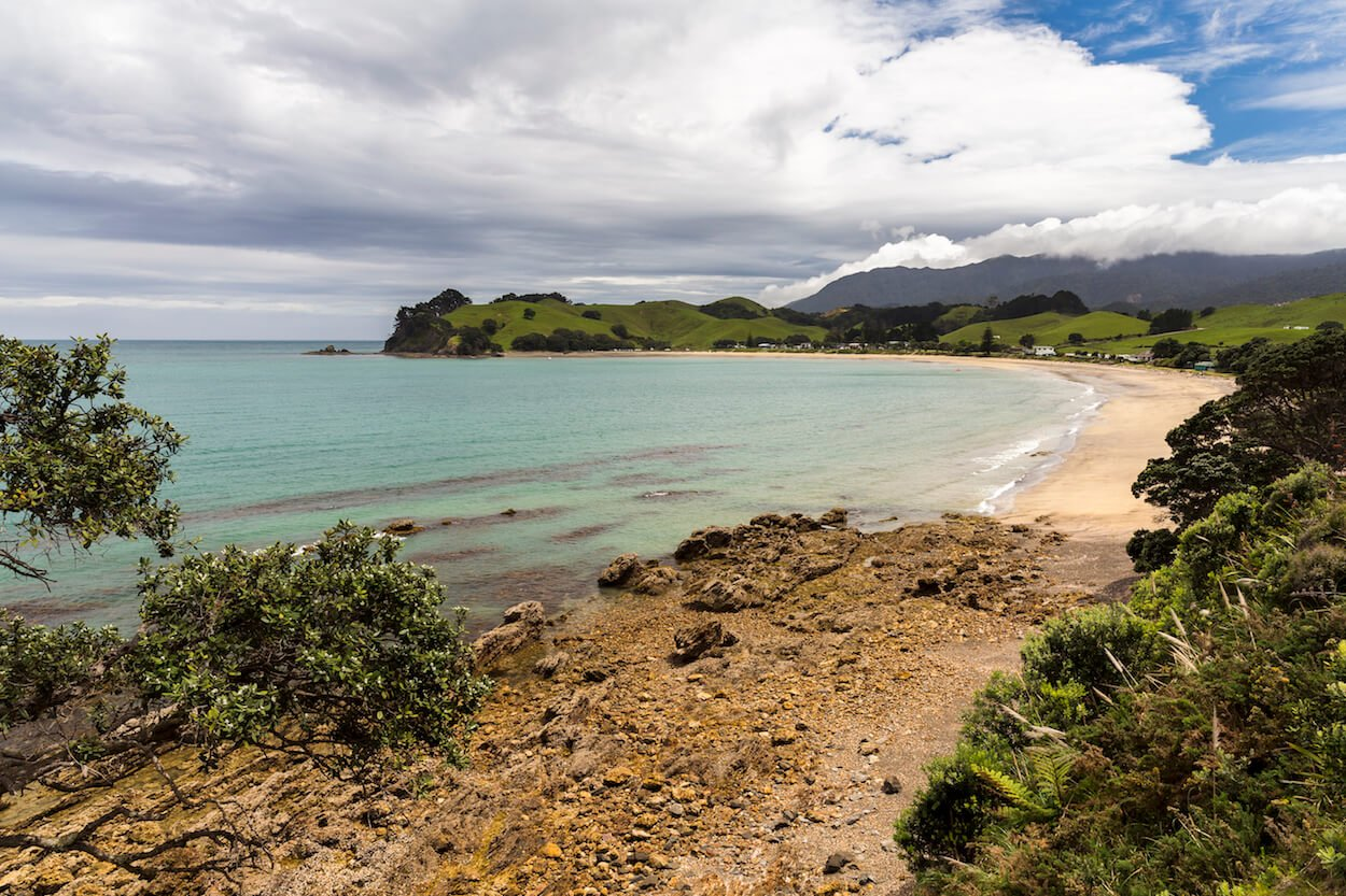 les ponts à sens unique dans la conduite en Nouvelle-Zélande