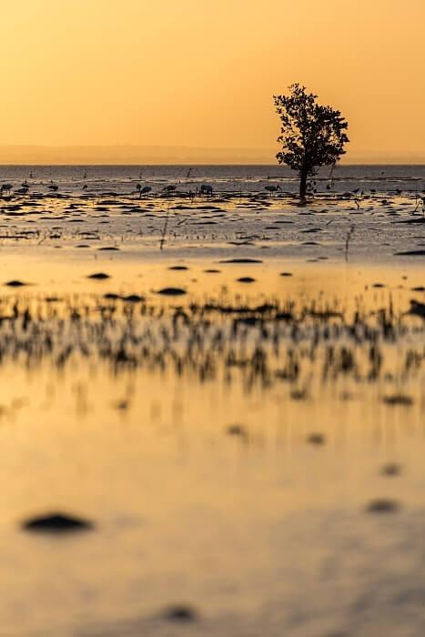blog de voyage le mozambique