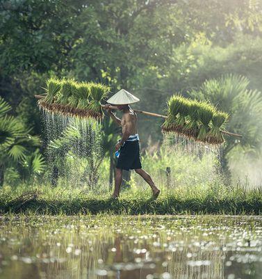 Vols au départ de nice vers bangkok