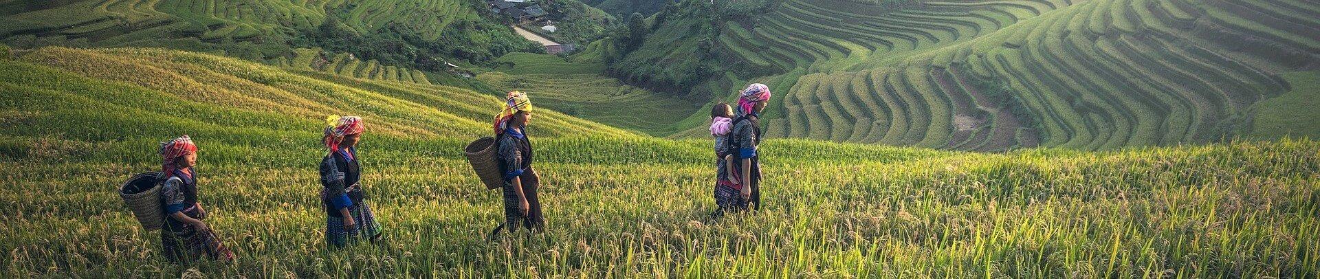 partir Visiter le Laos