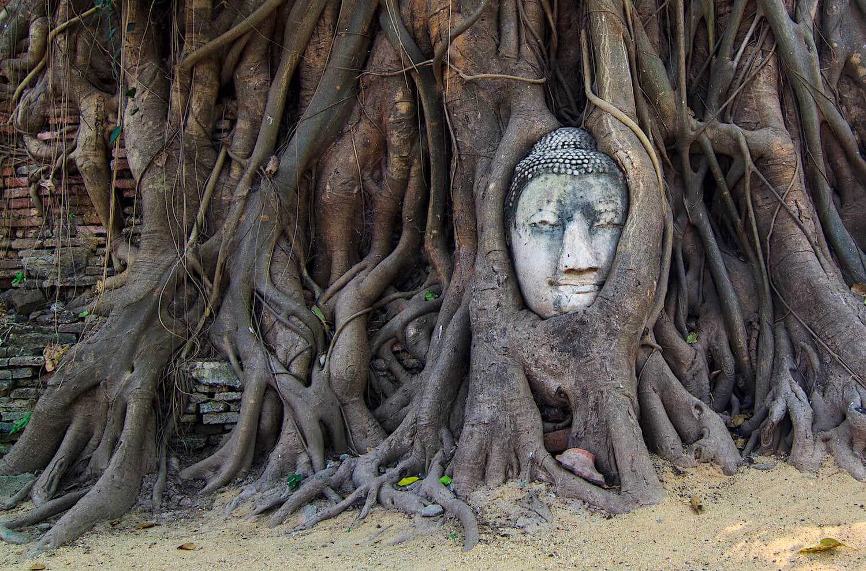 Où aller en Thaïlande : Les temples d'Ayutthaya