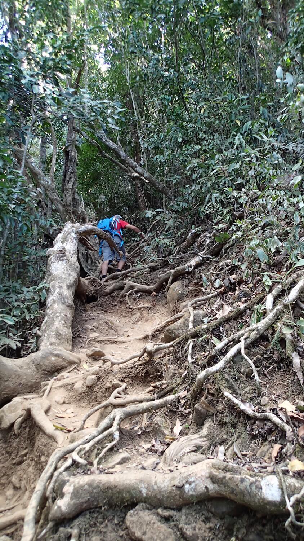 Randonnée sur le Mont Choungui à Mayotte