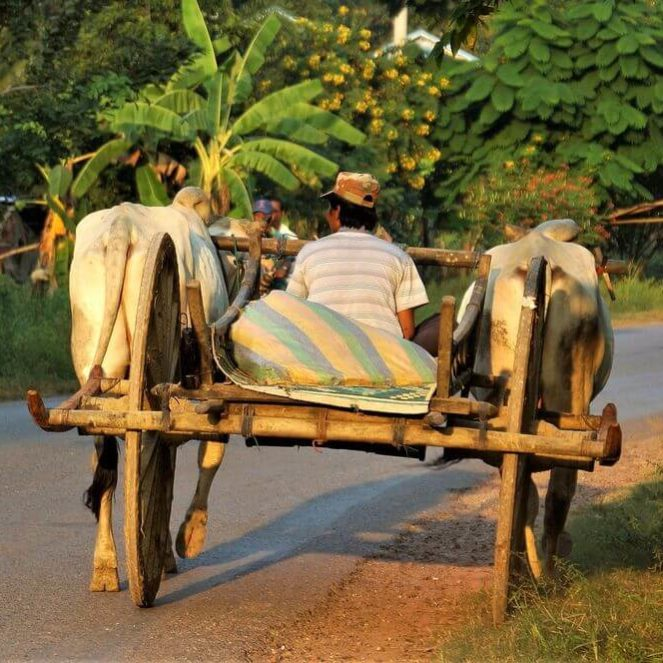 budget for transport in cambodia