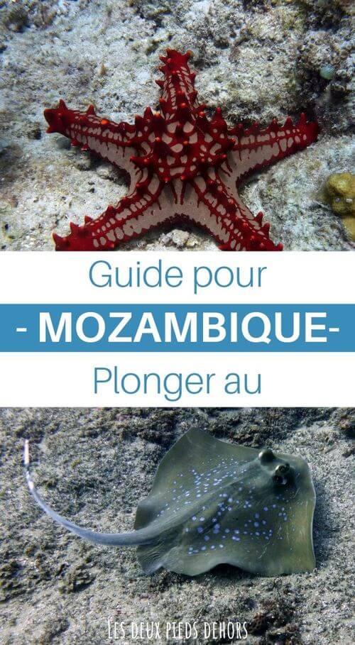 guide pour plonger au mozambique