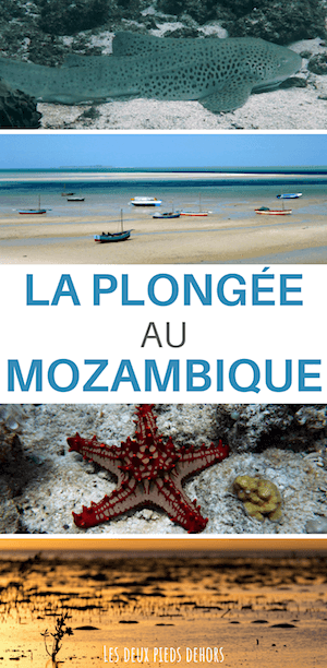 guide pour plongée au mozambique