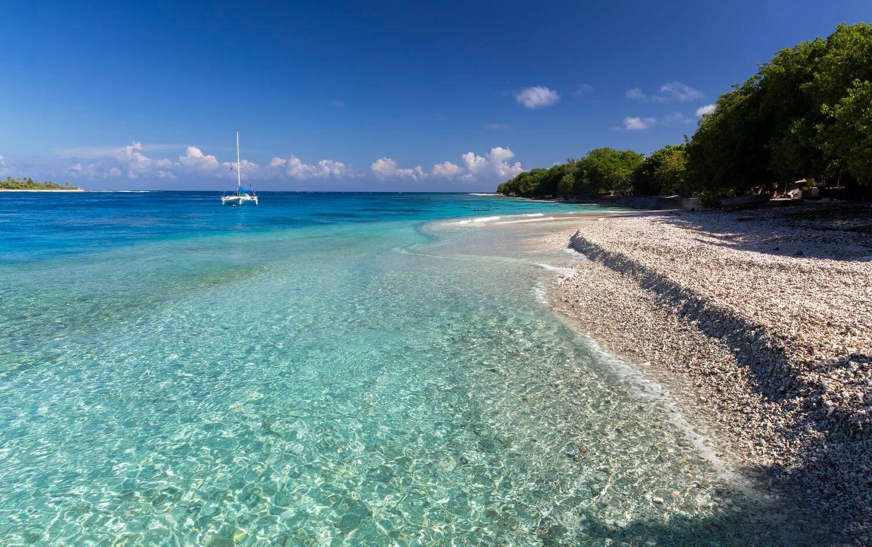 superbe plage de rangiroa en polynésie française