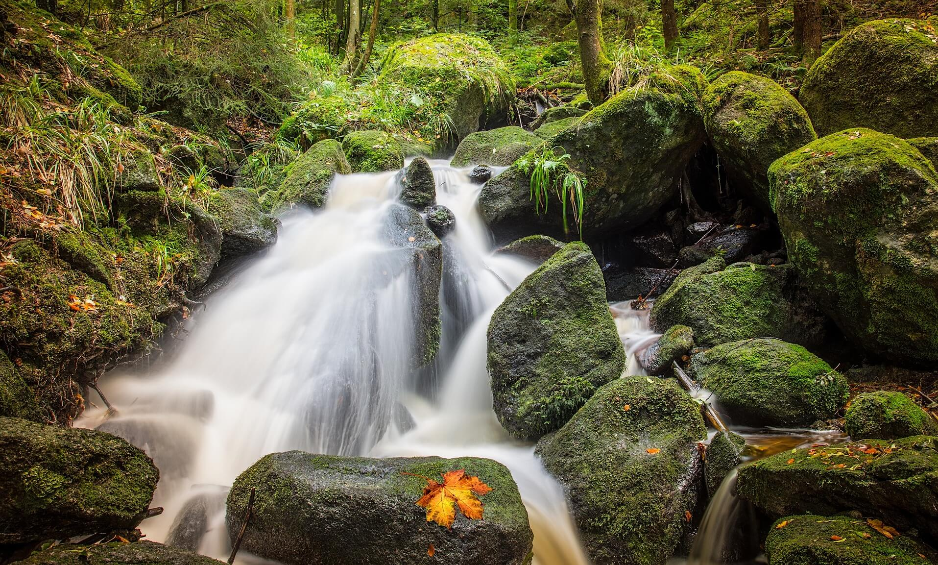 wood waterfall pictures