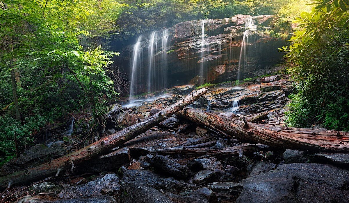 photo de cascade en sous-bois