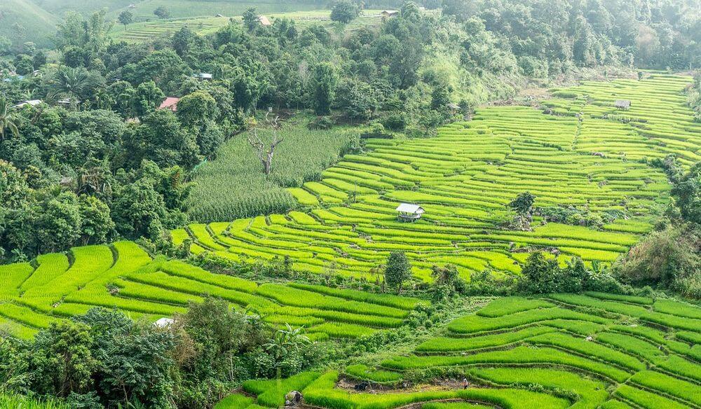 visiter la thailande en vacances