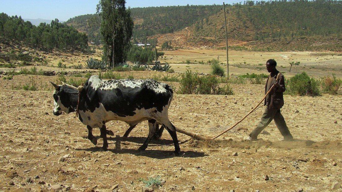 voyagee ethiopie voyager moins cher