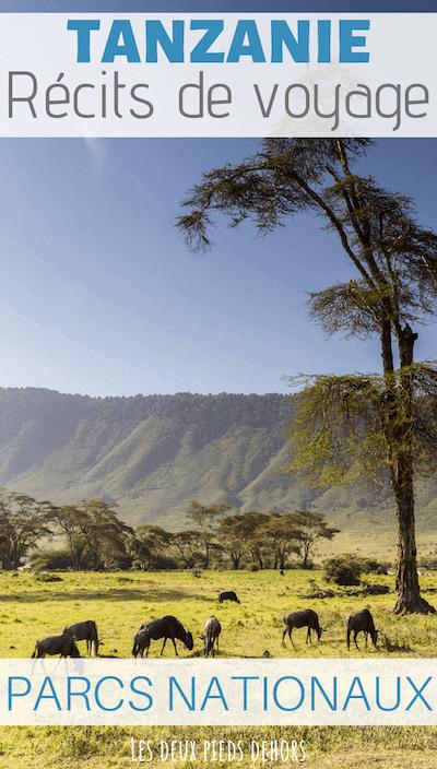visiter les parcs nationaux en tanzanie