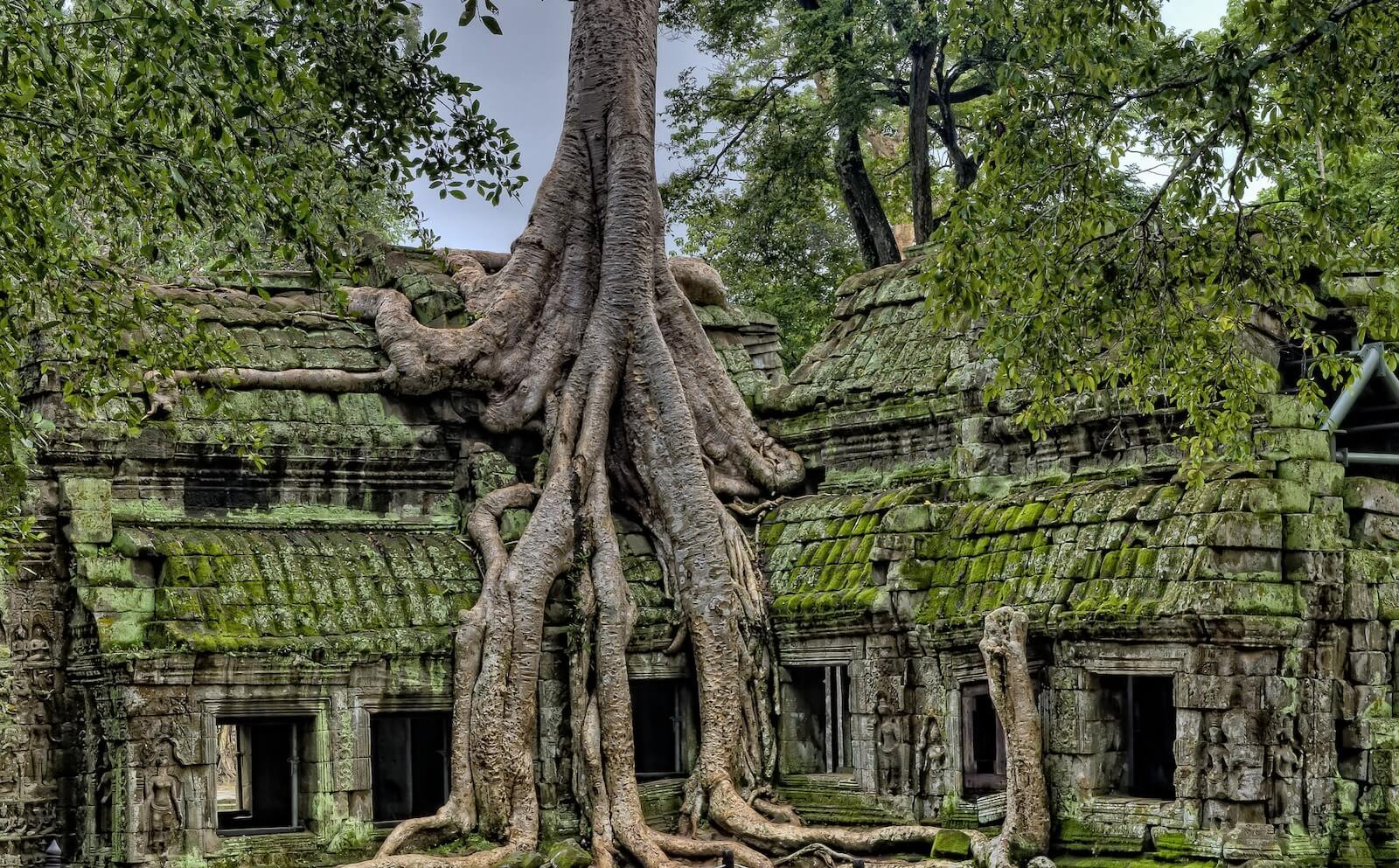 quand partir au cambodge selon les saisons