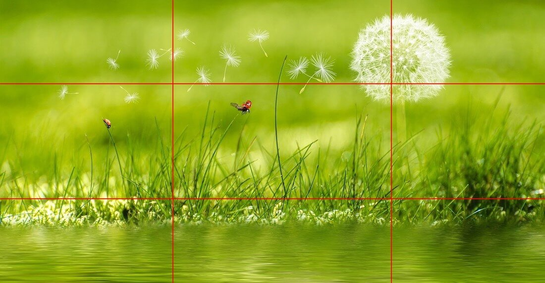 how is rule of thirds used