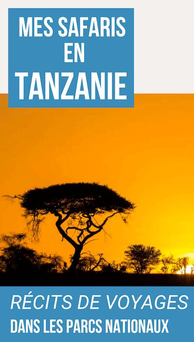 visiter la tanzanie en safari