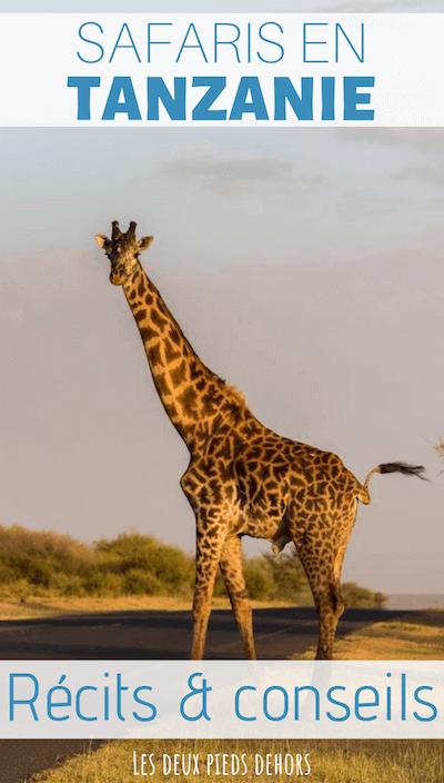 safaris en tanzanie, la visite