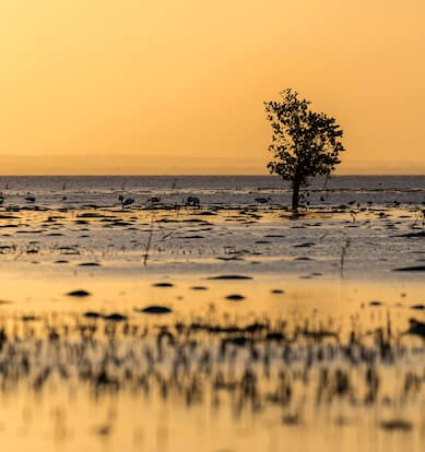 travel blog mozambique