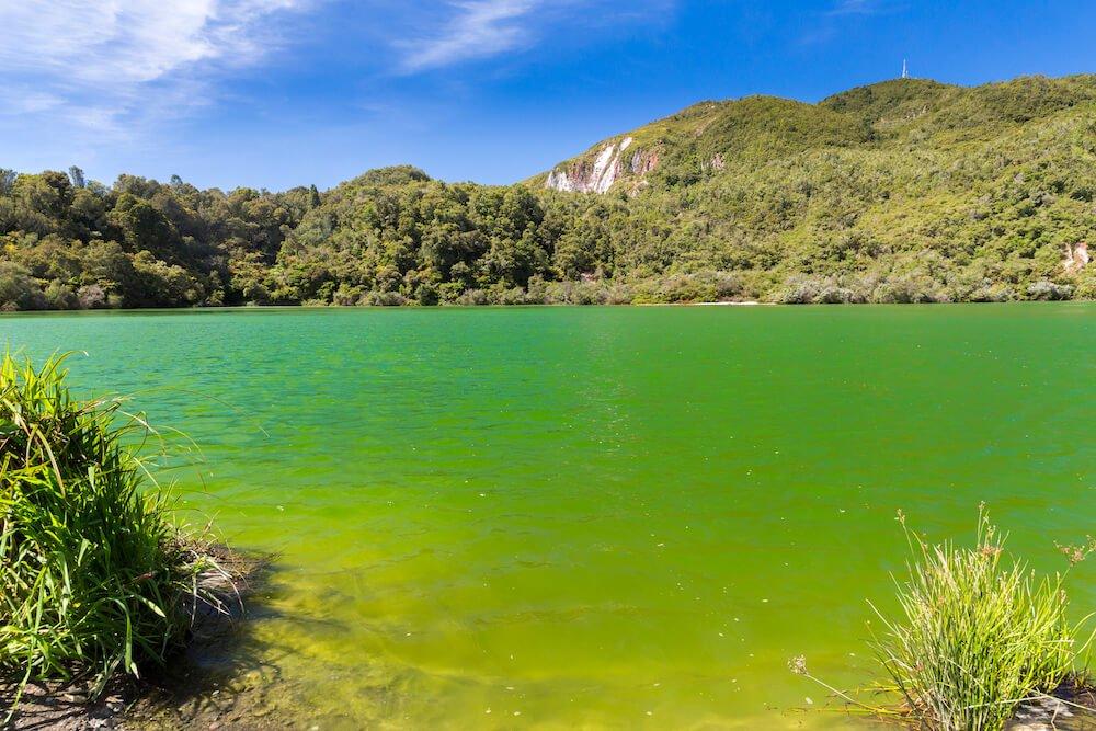 lac autour de wai o tapu vert