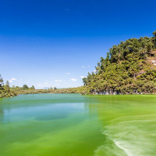 lac vert de wai o tapu