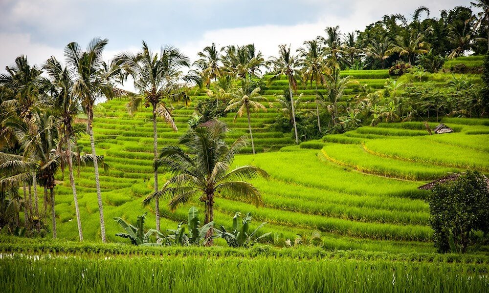 voyager en indonésie, quel budget