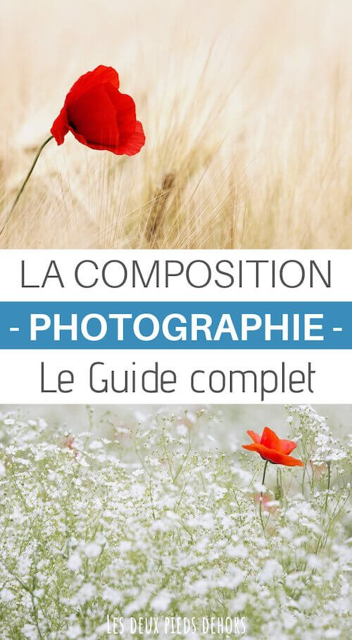 composition en photo