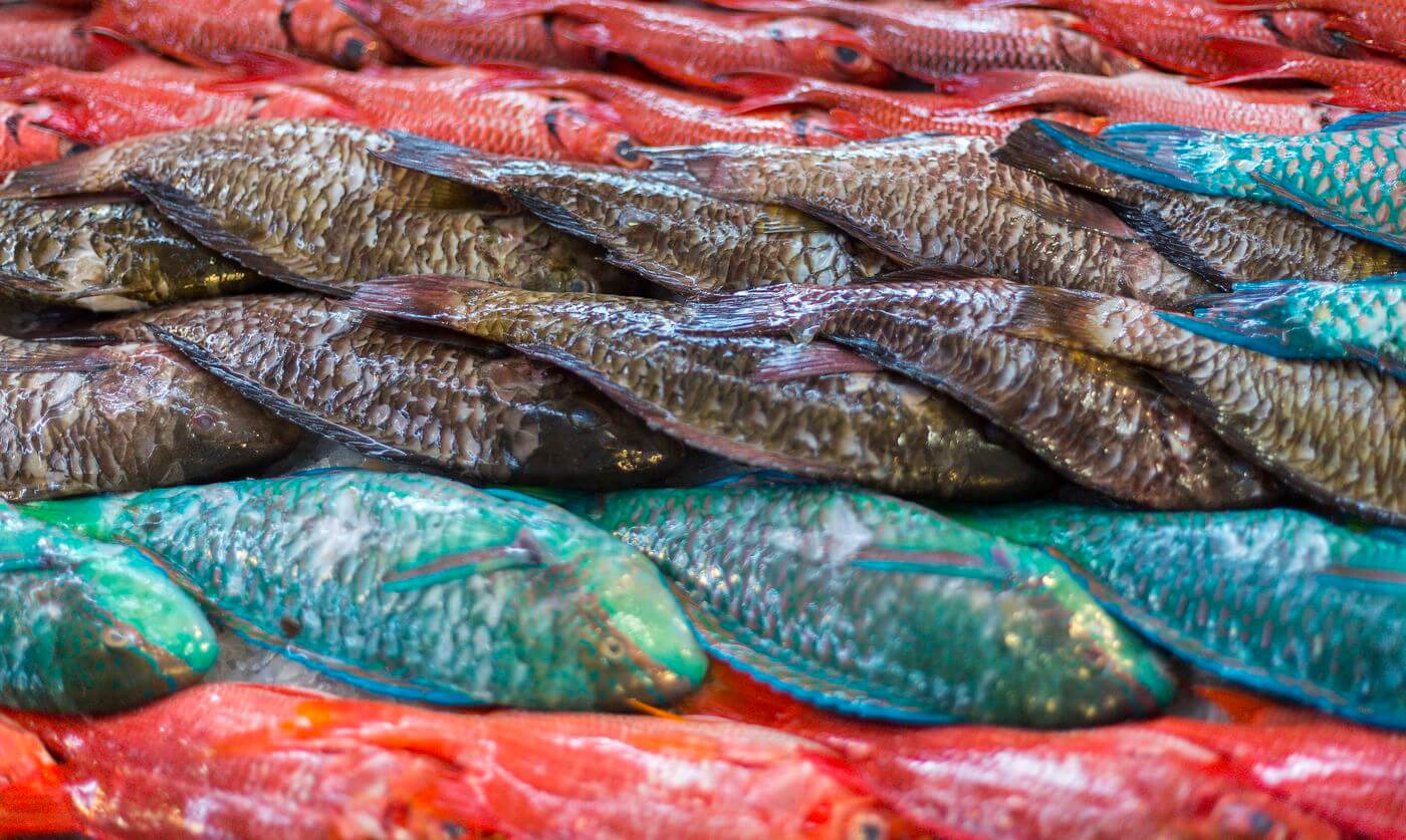 poisson papeete
