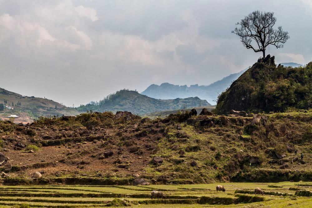 nord vietnam voyage asie du sud-est