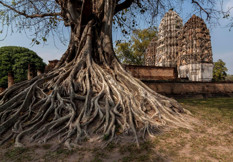 temples de sukhothai thailande