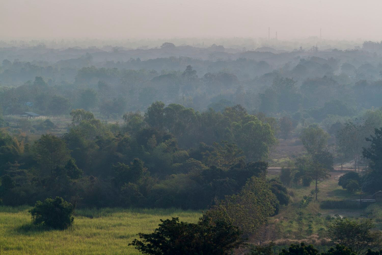 rizière sukhothai thailande