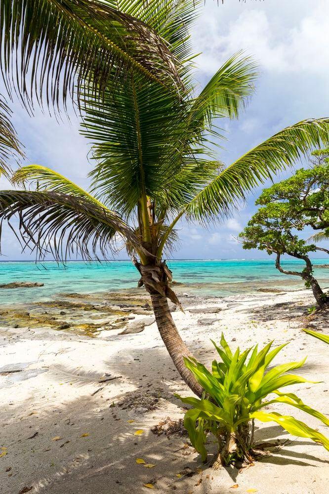 camper en polynésie