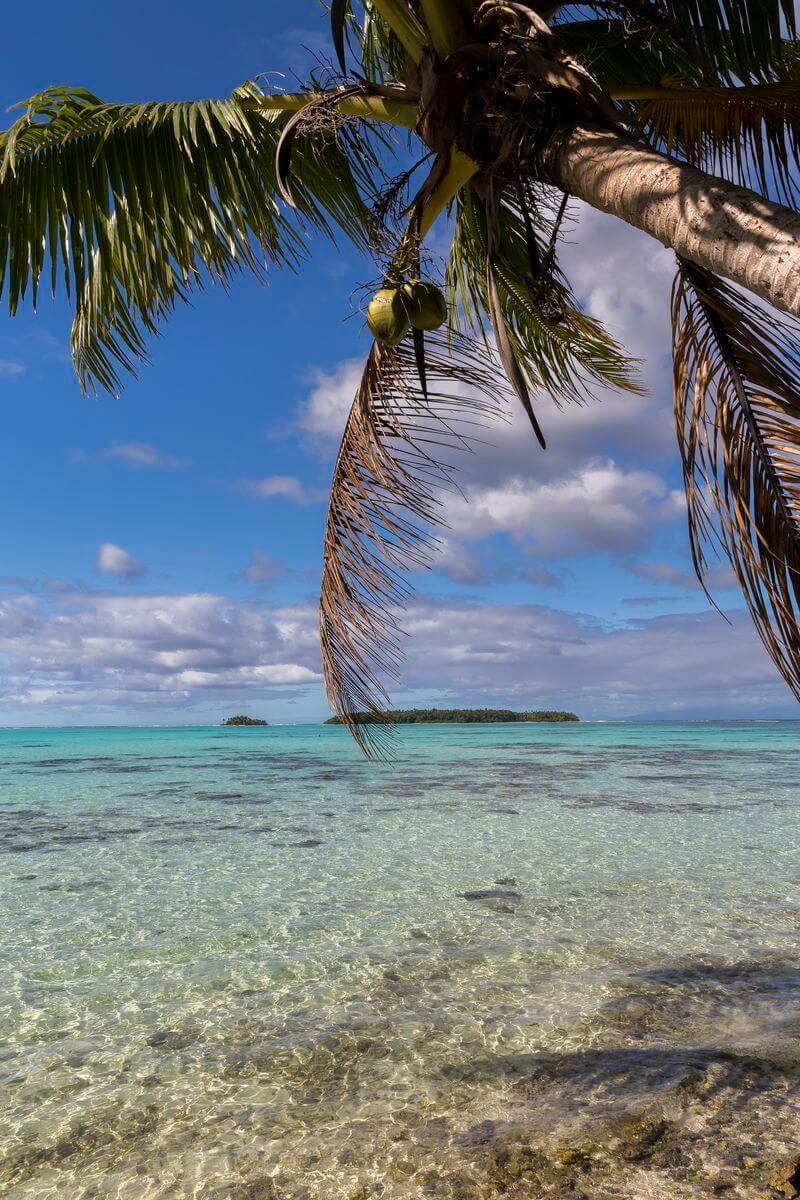 camper à tahiti