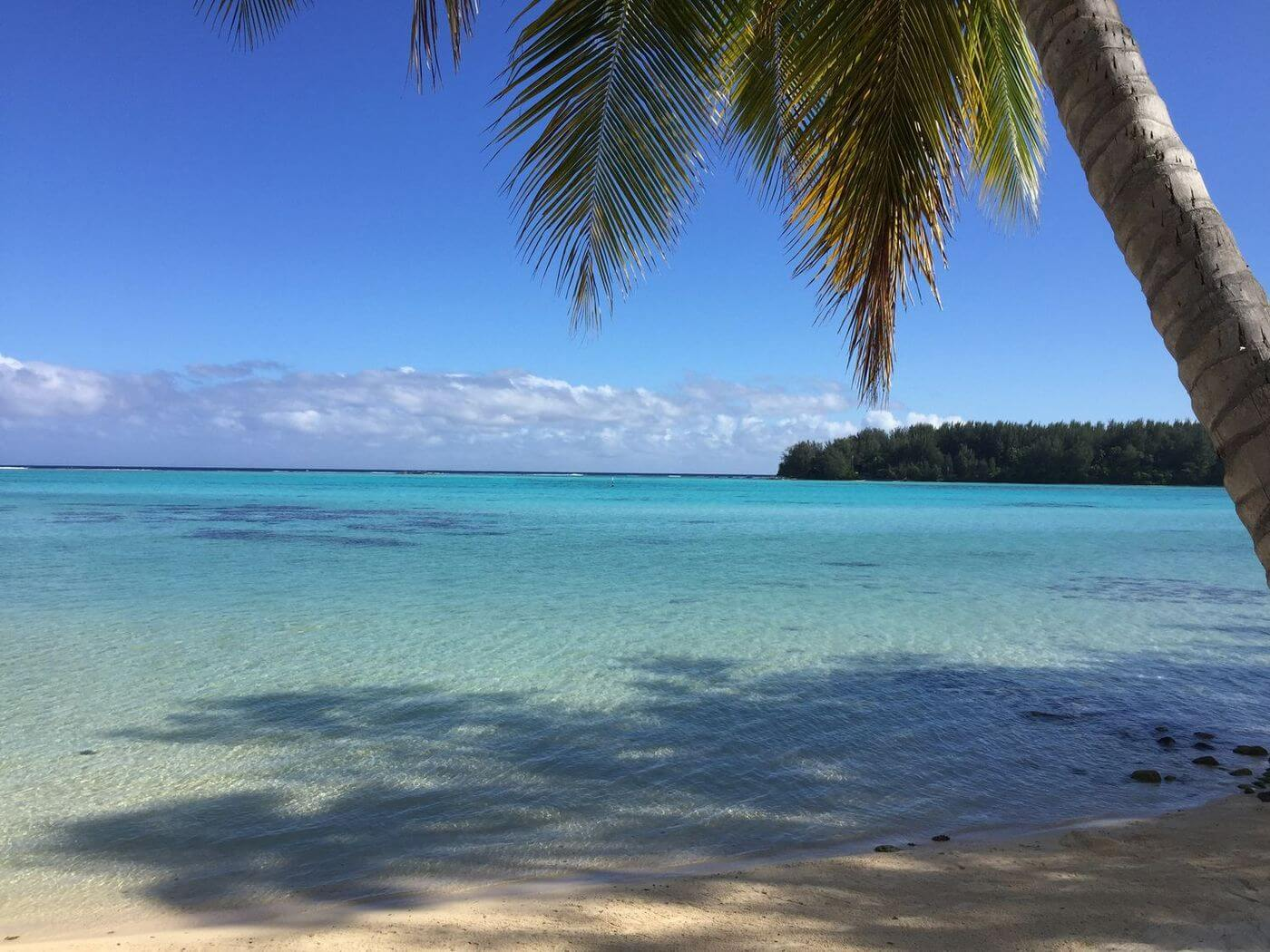moorea during a honeymmon in french polynesia