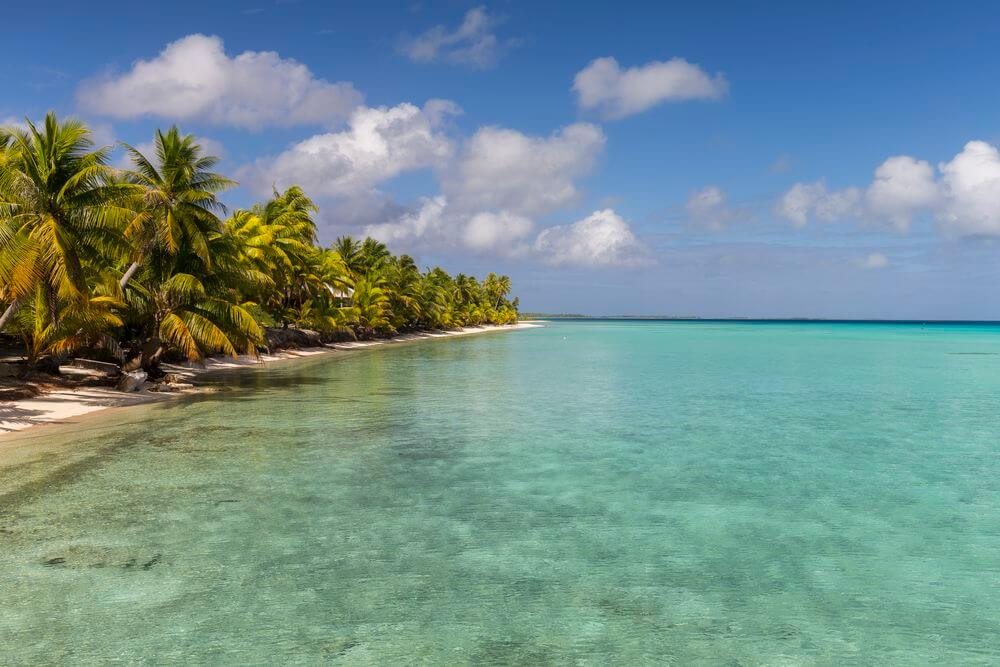 tikehau atoll for a honeymoon french polynesia