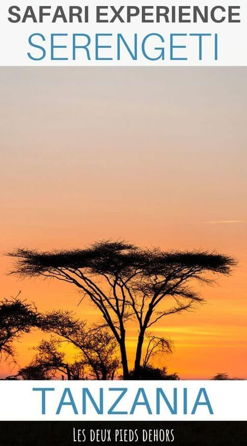 Tanzania safari in the Serengeti
